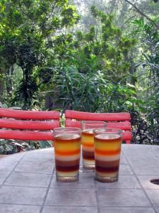 Srimangal är känt för sitt 7-layer- tea så det fick vi självklart prova.
